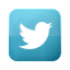 Visit Me On Twitter