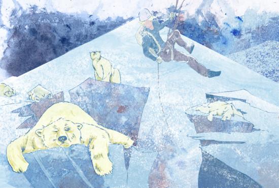 Polar Bears WIP